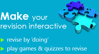 make your revision interactive